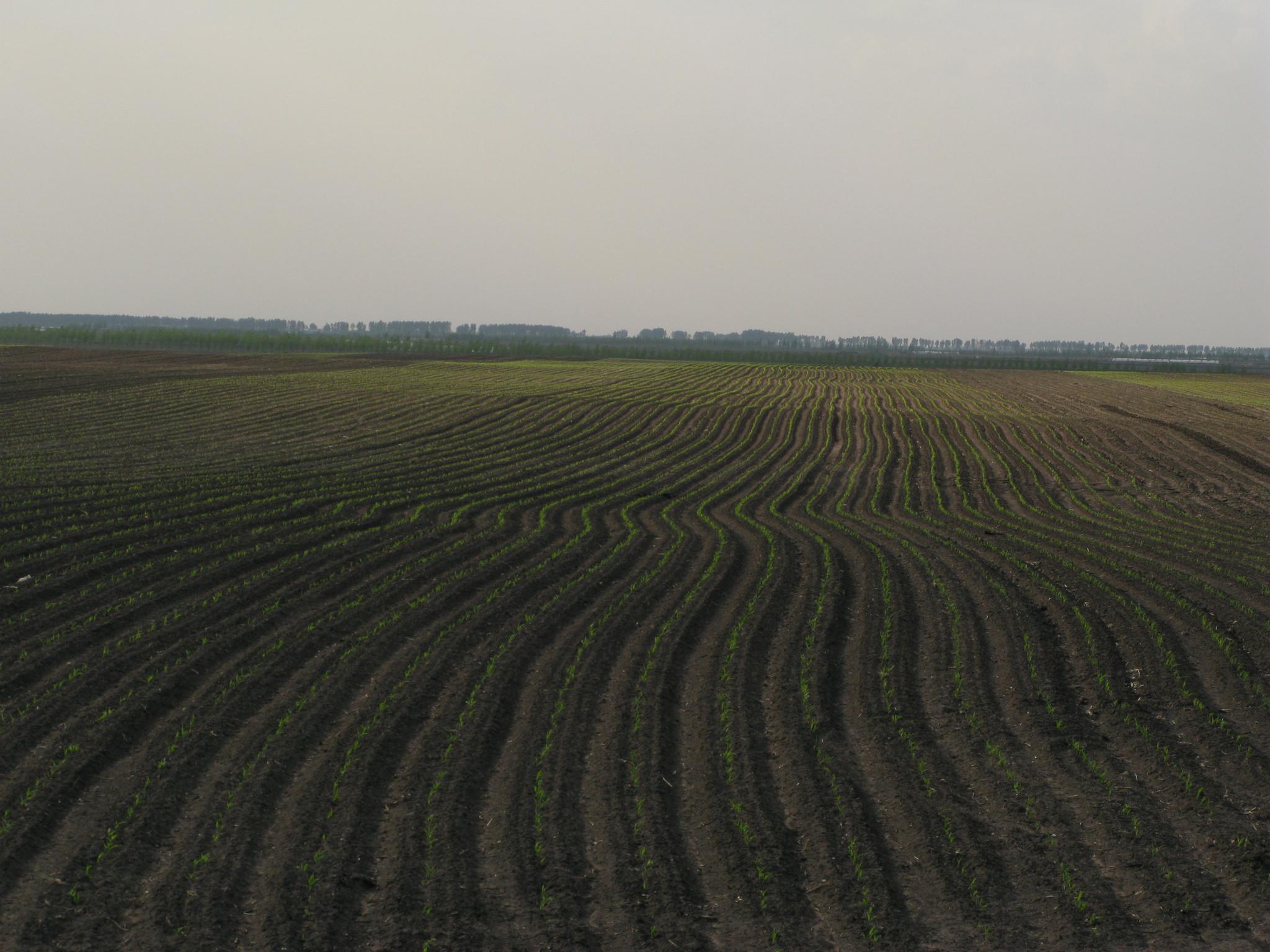 土地督察 十三五 规划印发 严守耕地保护红线成重点 -资讯详情